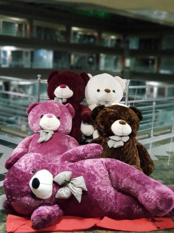 خرس مخمل سایز بزرگ